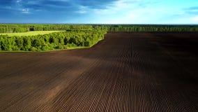 Luftbewegung über Braun pflog Feld durch grünen Wald stock video footage