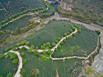 Luftbildfotografie auf die Gebirgsteegartenlandschaft Lizenzfreie Stockbilder
