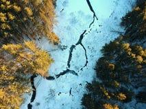 Luftbrummen schoss vom Wicklungsfluß durch Winterwald Stockfotos