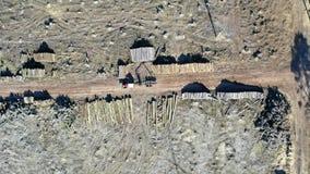 Luftbrummenansicht des Abholzungswaldes für das Ernten eines Holzes stock footage