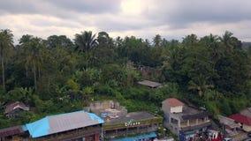 Luftbrummenansicht oben von Bali-Landschaften mit Terrassenreisfeld stock video