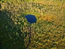Luftbrummenansicht von Teich in einer bewaldeten Wildnis in im Hinterland New York Stockfoto