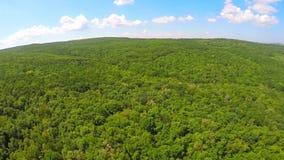 Luftbrummenbild der Ackerlandlandschaft Stockfotografie