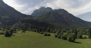 Luftbrummenflug über grüner Rasenfläche mit Blumen stock footage