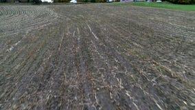 Luftdrohne - Fliege über dem Mais-Feld eben geerntet im Fall in Vermont stock footage