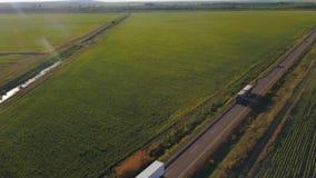 Luftflug über der Straße zwischen Feldern Luftbrummengesamtlänge 4k stock footage