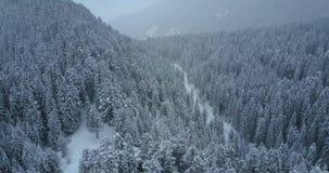 Luftflug über Winterwald mit Straße stock video footage