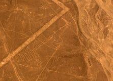 Luftflugzeugpanoramablick zu Nazca-geoglyph Linien alias Wal, Ica, Peru lizenzfreie stockfotos