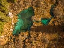 Luftfoto der magischen Landschaft gesehen vom Luftbrummen, Zelenci, Slowenien lizenzfreie stockfotografie