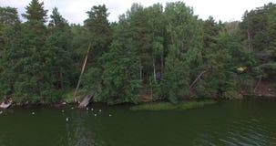 Luftfoto der Natur stock video