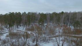Luftfoto der Natur stock footage