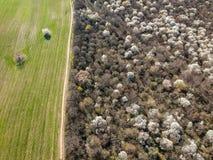 Luftfoto des Feldes und des Parks stockfotos