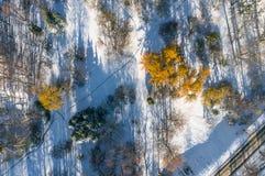 Luftfoto des Parks mit frühem Schnee Stockbild