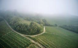 Luftfoto von Piemont-Weinbergen lizenzfreie stockfotografie
