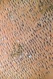 Luftfotographie eines Friedhofs Lizenzfreie Stockfotos