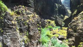 Luftgesamtlänge der szenischen vulkanischen Landschaft in Schlucht und in Klippen Masca, in Teneriffa, Kanarische Inseln, Spanien stock footage