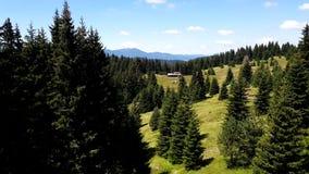 Luftgroßaufnahme des Holzes in den bulgarischen Bergen stock footage