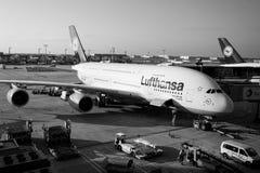 Lufthansa Airbus está no aeroporto, Francoforte - am - cano principal, Alemanha Imagem de Stock