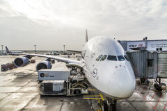 Lufthansa Airbus A380 at the Gate of the Frankfurt Airport Stock Photos