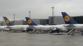 Lufthansa aircrafts at Frankfurt Airport, Germany stock footage