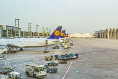 Lufthansa Aircrafts standing at Royalty Free Stock Photography