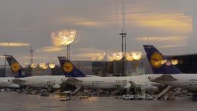 Lufthansa hub at the airport of Frankfurt, Germany stock footage
