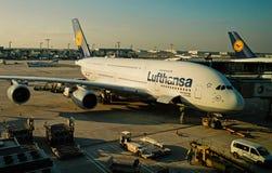 Lufthansa-luchtbustribunes in luchthaven, Frankfurt-am-Main, Duitsland stock afbeeldingen