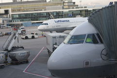 Lufthansa plane at airport gate Royalty Free Stock Images