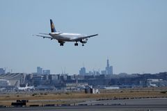 Lufthansa plane landing on Frankfurt Airport, FRA, buildings on background. Lufthansa jet lands on runway, Frankfurt Airport, FRA, Germany, buildings on stock photos