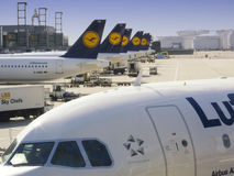 Lufthansa planes. Several Lufthansa planes in the Frankfurt airport Royalty Free Stock Photography