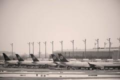 Lufthansa surface à la porte terminale dans l'aéroport de Munich, neige Photographie stock libre de droits