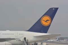 Lufthansa surfacent Photo stock
