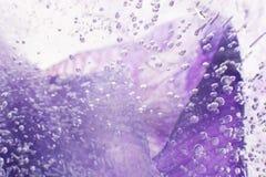 Luftiga delikata bubblor som flödar till och med is med purpurfärgad färgund Arkivbilder