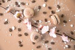 Luftigt och läckert chokladkaffe och borggårdar Macarons Arkivbild