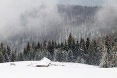 Luftlandschaft des Winterwaldes Stockbild