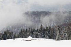 Luftlandschaft des Winterwaldes Stockfoto