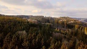 Luftlandschaftshochlandlandschaft mit Wald stock video