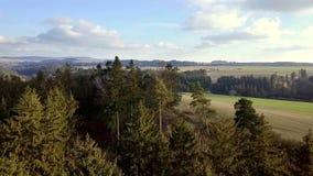 Luftlandschaftshochlandlandschaft mit Wald stock footage