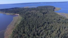 Luftpanorama von Forest On Island On Lake Seliger, Russland stock video