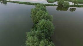 Luftschuß der Dnipro-Flussmündung mit Baumreihen im Wasser stock video