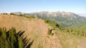 Luftschuß des grünen Waldes und Berge decken auf stock footage