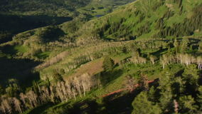 Luftschuß des grünen Waldes und der Berge mit Spur stock video footage