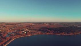 Luftschuß des schönen Flussufers mit einem Wald stock video footage