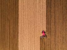 Luftschuß eines Traktors, der Feld am Frühling kultiviert stockfoto
