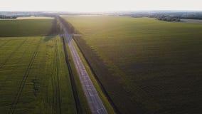 Luftschuß Fliegen Sie über leere Landstraße am Sommerabend zwischen Gelb und Grünfelder stock video