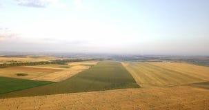 Luftschuß von Feldern mit verschiedenen Arten der Landwirtschaft bewirtschaften Luftschuß des Ackerlands Luftschuß von landwirtsc stock footage