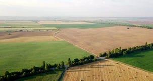 Luftschuß von Feldern mit verschiedenen Arten der Landwirtschaft bewirtschaften Luftschuß des Ackerlands Luftschuß von landwirtsc stock video