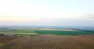Luftschuß von Feldern mit verschiedenen Arten der Landwirtschaft bewirtschaften Luftschuß des Ackerlands Luftschuß von landwirtsc stock video footage