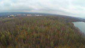 Luftschuß, Wald mit kahlen Bäumen im Herbst, Frühling, Jagd, Fangzeit stock video