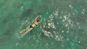 Luftschu? einer jungen Frau, die in aufpassenden Korallen einer hohen See und in den exotischen Fischen schnorchelt stock footage